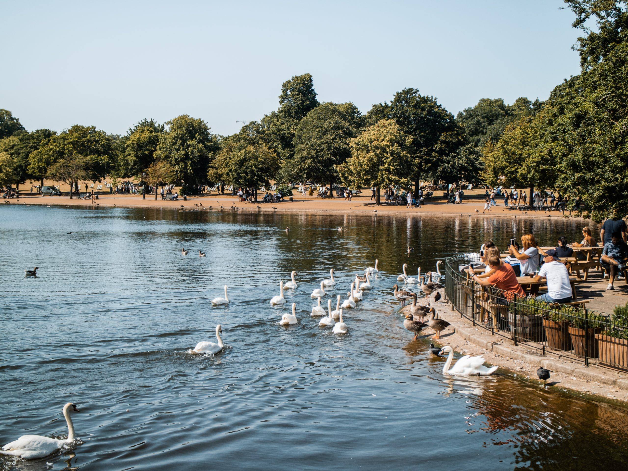 London's Best Parks For a Picnic
